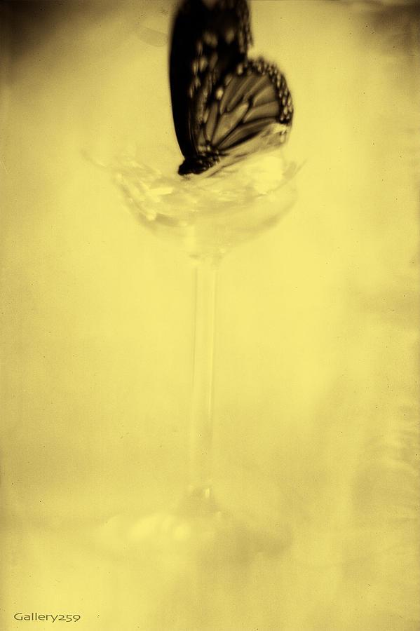 Graham Hughes Photograph - Broken by Graham Hughes