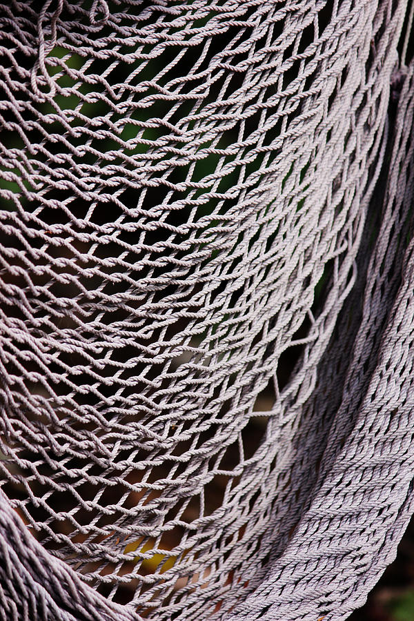 Medium image of rope photograph   broken hammock by camille watson