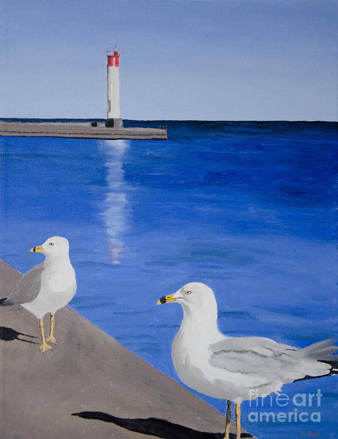 Bronte Painting - Bronte Lighthouse Gulls In Oil by Laurel Best