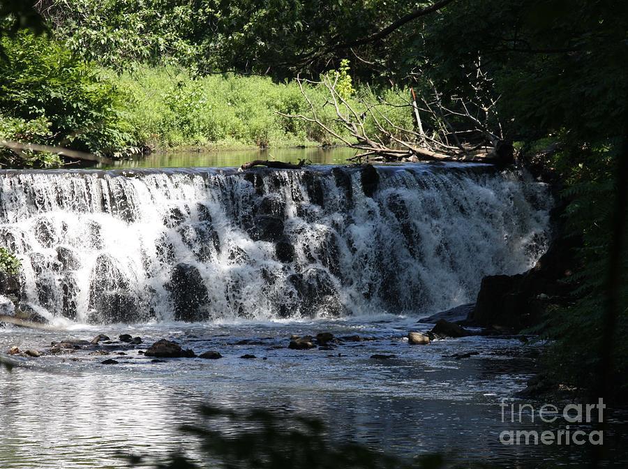Telfer Photograph - Bronx River Waterfall by John Telfer