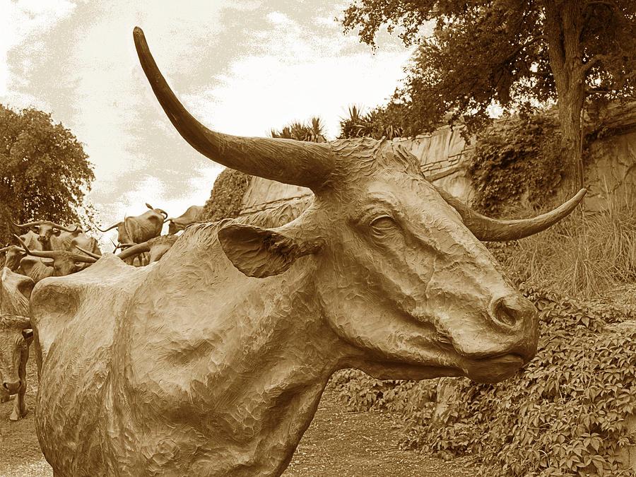 Longhorns Photograph - Bronze Longhorn by Jim Smith