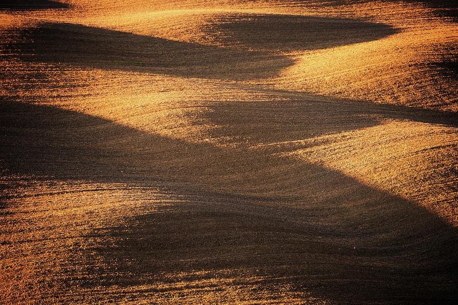 Bronze Waves Photograph by Philipp Klinger