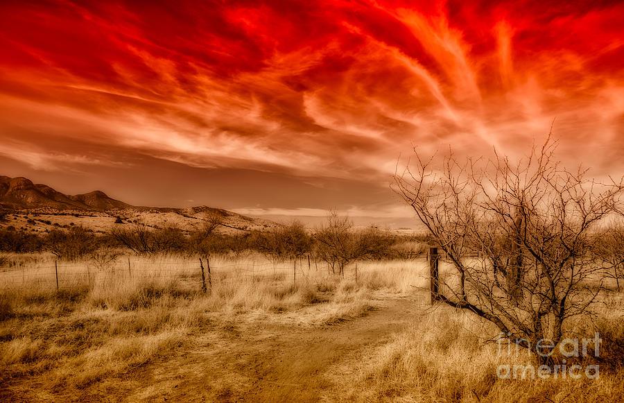 Arizona Photograph - Brown Canyon Grasslands - Toned by Al Andersen