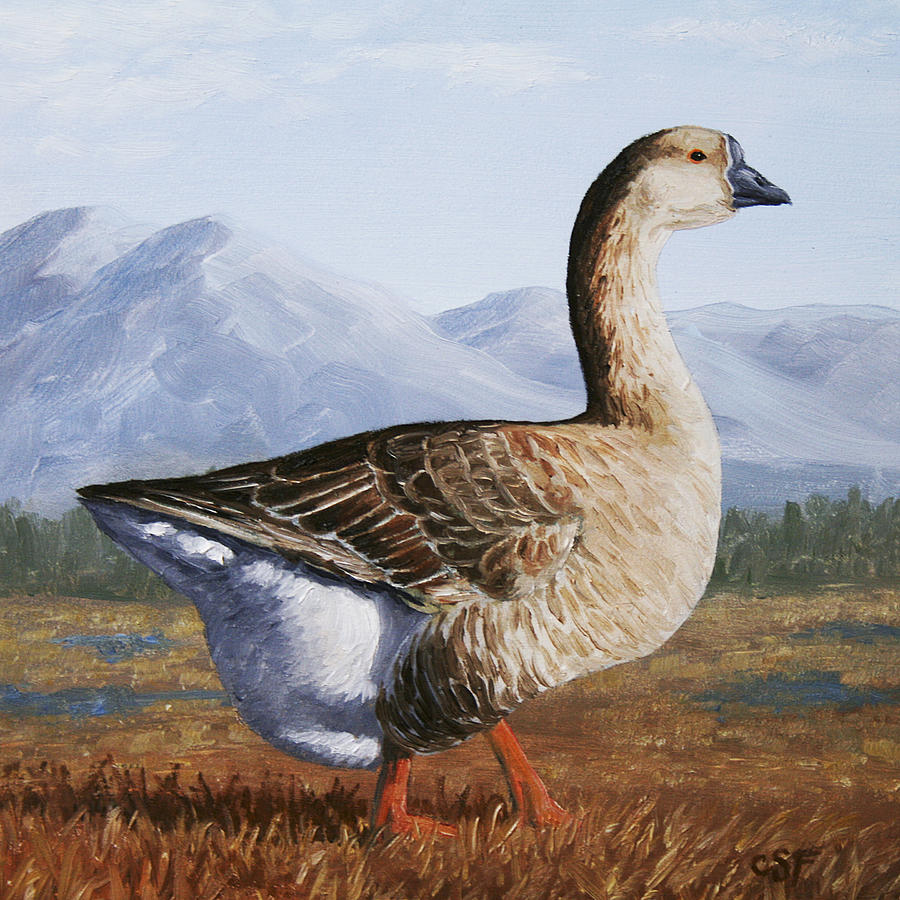 Bird Painting - Brown Chinese Goose by Crista Forest
