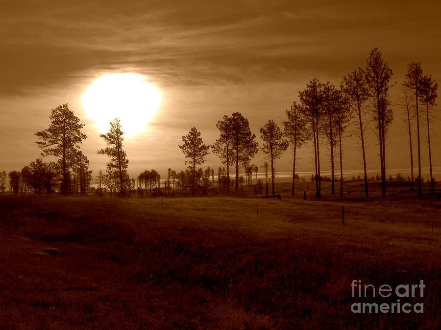 Brown Fog Photograph