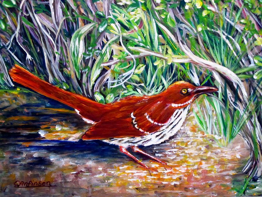 Brown Thrasher Painting - Brown Thrasher In Sunlight by Carol Allen Anfinsen
