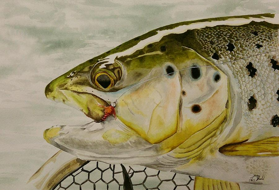 Trout Painting - Brown Trout by Jason Bordash