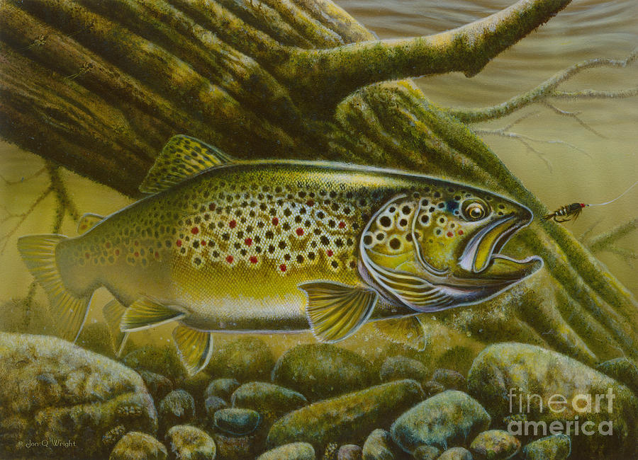 Jon Q Wright Painting - Brown Trout Log by JQ Licensing