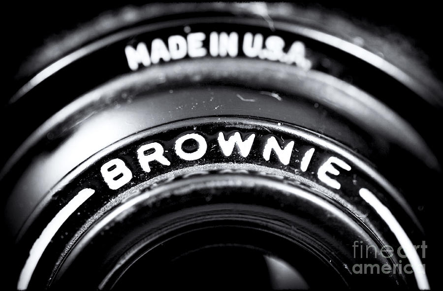 Brownie Photograph - Brownie by John Rizzuto