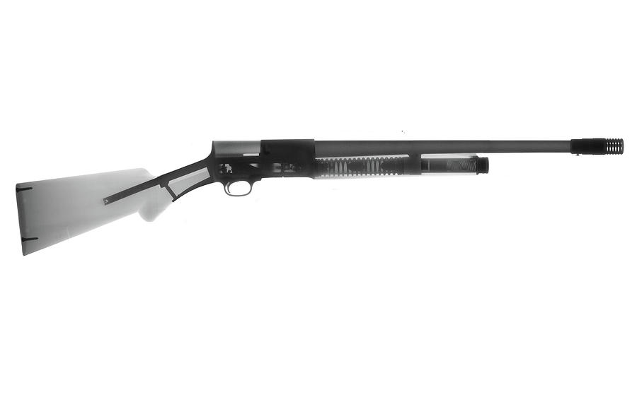 Antique Firearms Photograph - Browning Fn A5 Shotgun X-ray Photograph by Ray Gunz