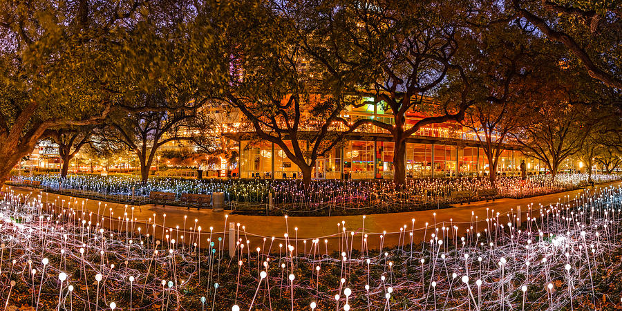 Downtown Photograph   Bruce Munro Field Of Lights Panorama At Discovery  Green Park   Downtown Houston