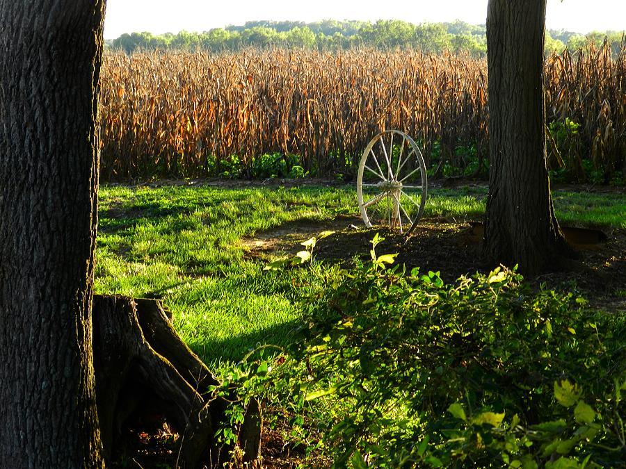 Rural Scenes Photograph - Bruces Place by Julie Dant