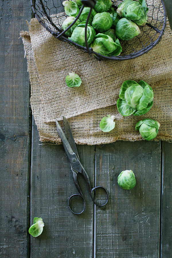 Brussels Sprout Photograph by Ingwervanille