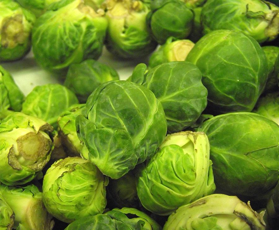 Brussel Sprouts Photograph - Brussels by Tiffany Anthony