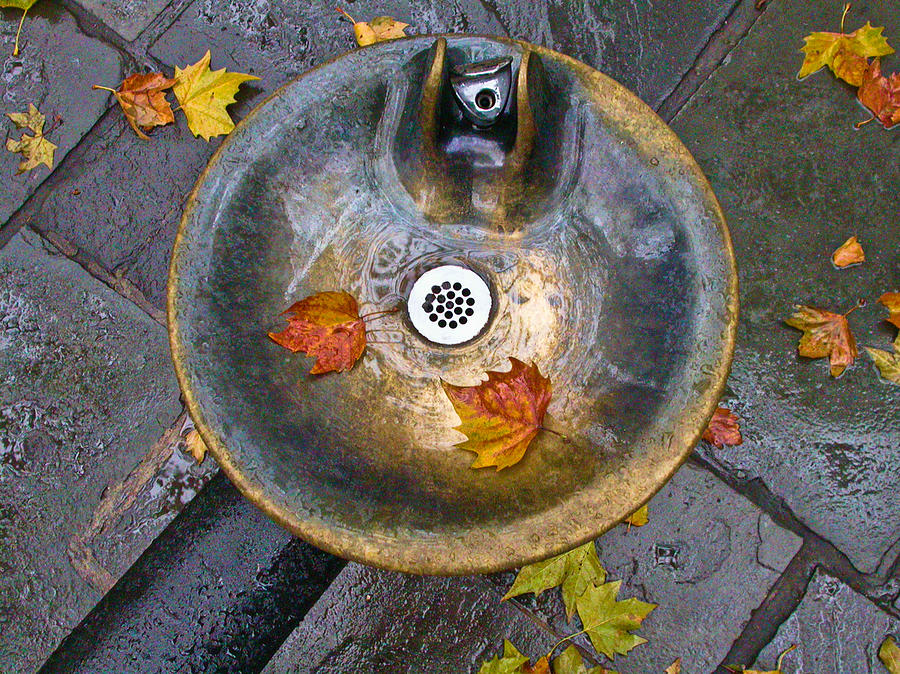 New York City Photograph - Bryant Park Fountain In Autumn by Gary Slawsky