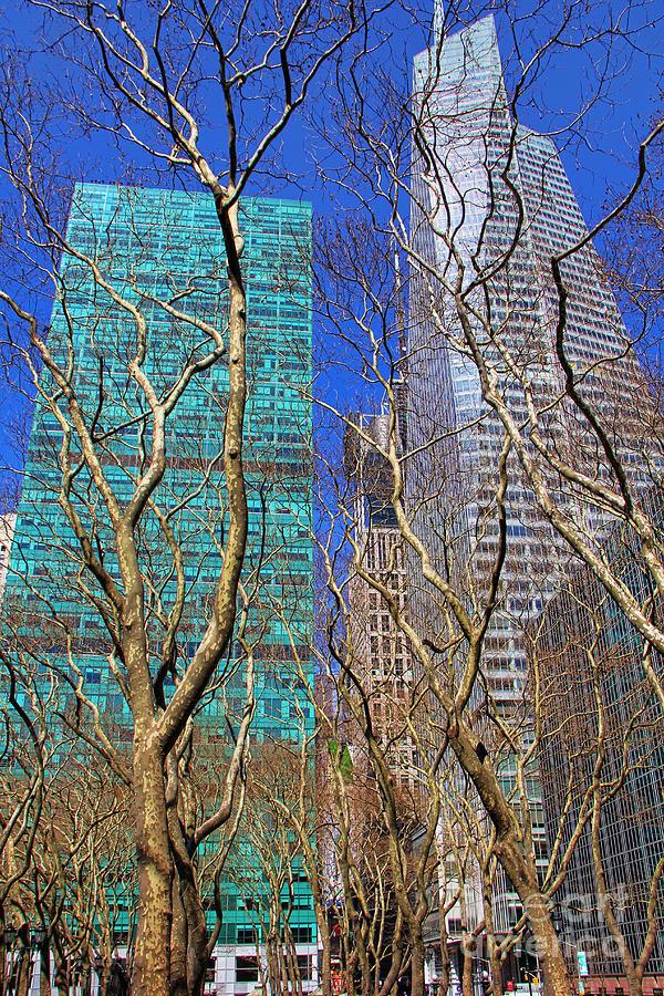 New York Photograph - Bryant Park by Mariola Bitner