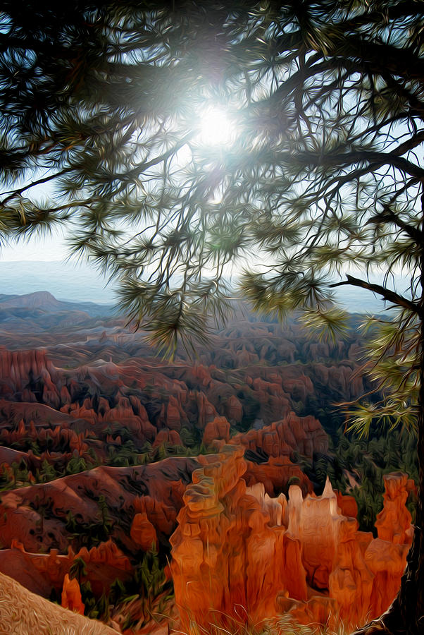 Bryce Canyon Photograph - Bryce Canyon 3 by Tracy Winter