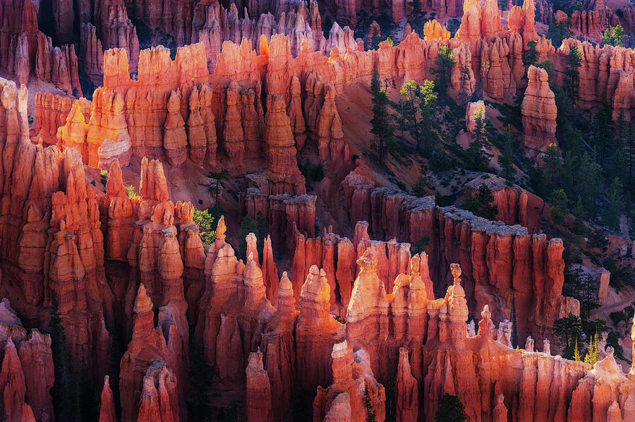 Bryce Photograph - Bryce Canyon At Sunset by ??? / Austin
