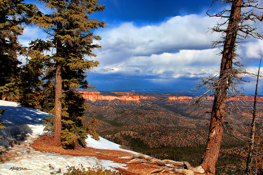 Bryce Canyon Photograph - Bryce Canyon Cliff Shot 3 by Marti Green