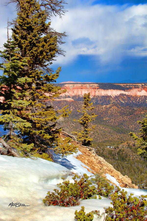 Canyon Bryce Photograph - Bryce Canyon Cliff Shot 4 by Marti Green