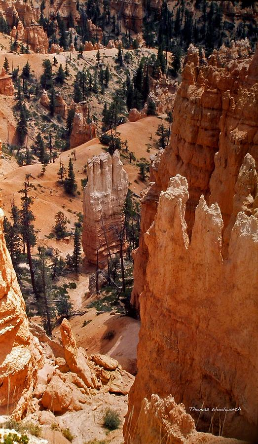 Bryce Canyon Photograph - Bryce Canyon National Park 2 by Thomas Woolworth