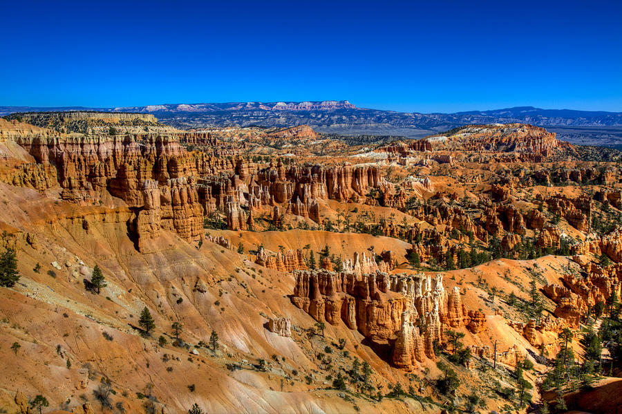 Bryce Canyon Photograph - Bryces Glory by Chad Dutson