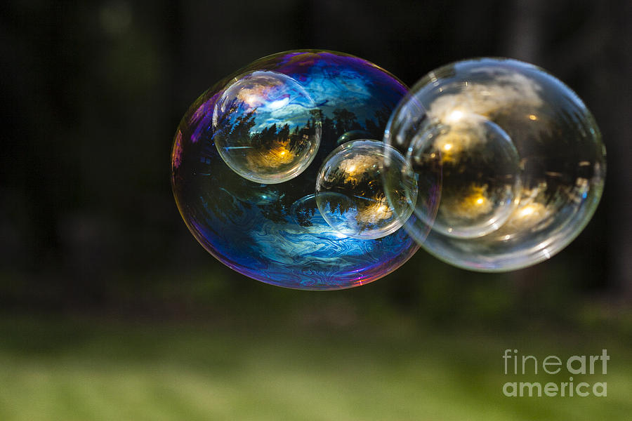 Backgrounds Photograph - Bubble Perspective by Darcy Michaelchuk