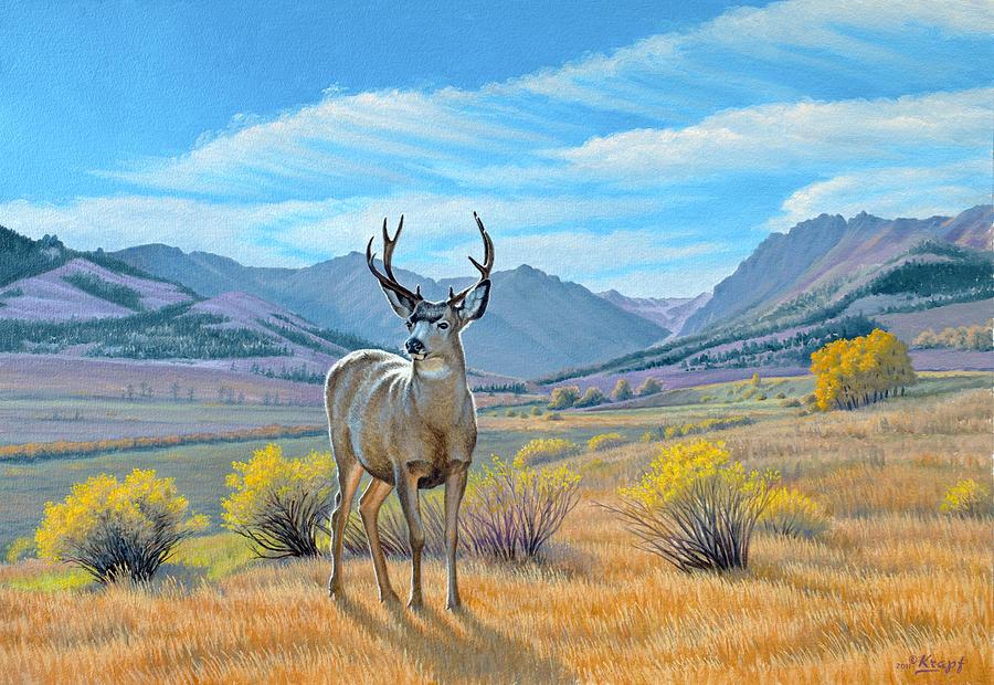 Wildlife Painting - buck Deer-tom Miner Basin by Paul Krapf