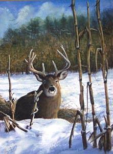 Wildlife Painting - Buck In Corn by Carl McKinley