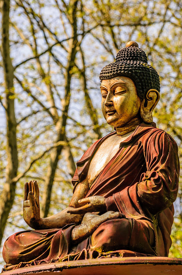 "an overview of the concepts of buddhism by siddhartha gautama 2018-06-08 overview of buddhism   the founder of buddhism was prince siddhartha gautama,  read more ""feedback of mr ronald arthur oates & mrs jackie on 20."