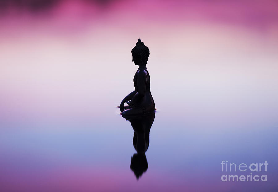 Buddha Photograph - Buddha Dawn by Tim Gainey