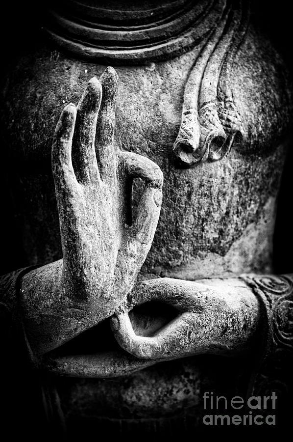 Buddha Photograph - Buddha Hand Mudra by Tim Gainey