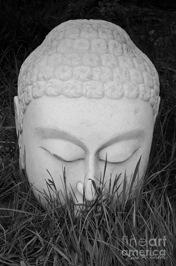 Black Photograph - Buddha I by Dave Gordon
