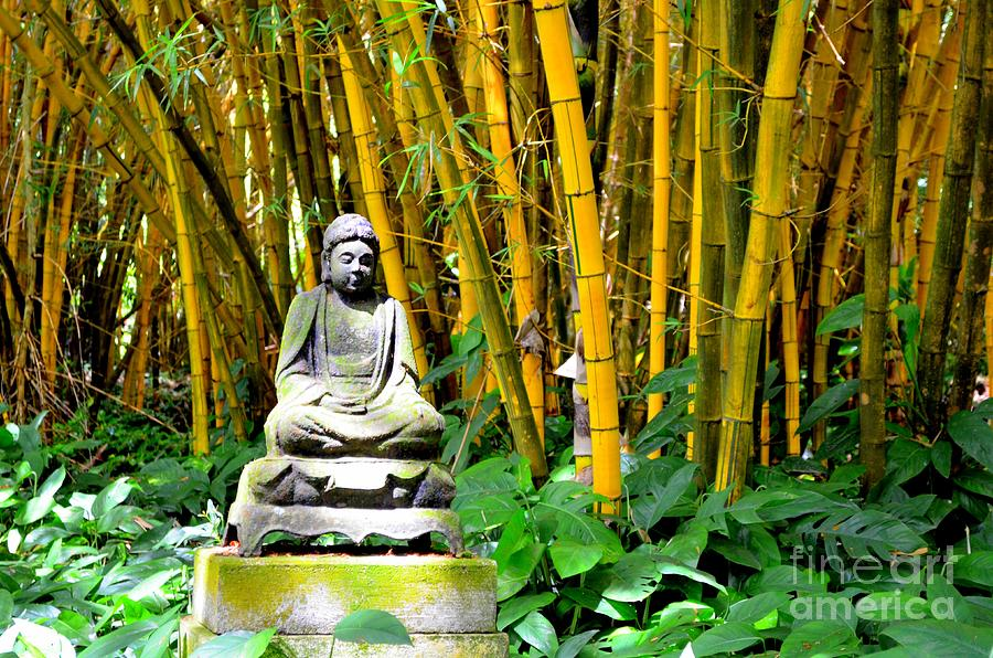 Buddha Photograph - Buddha In The Bamboo Forest by Mary Deal