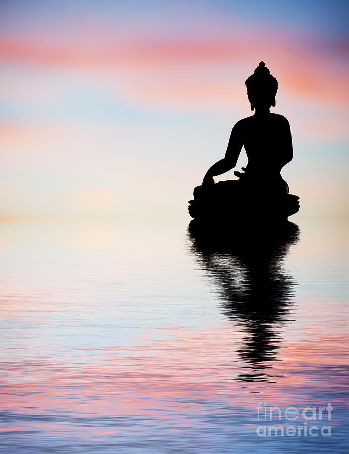 Buddha Photograph - Buddha Reflection by Tim Gainey