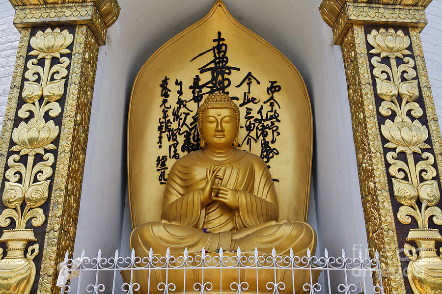 Buddha Photograph - Buddha Statue At The World Peace Pagoda Pokhara by Robert Preston