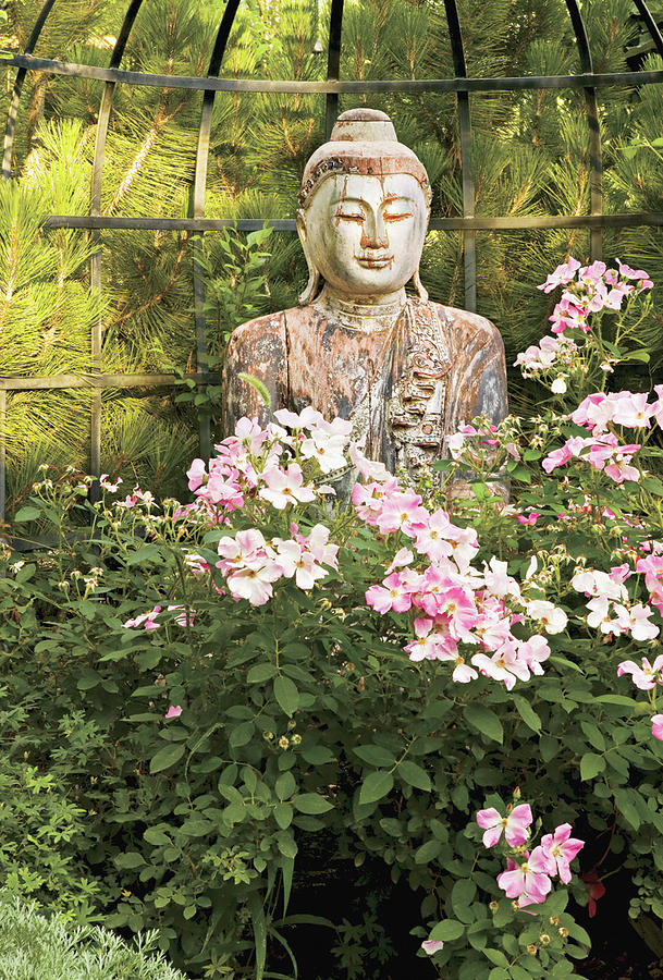 Buddha Statue In Garden Photograph By Robert Reck