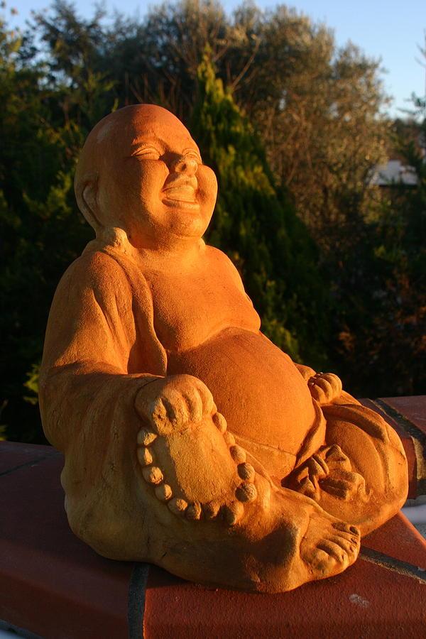 Buddha Photograph - Buddha Sunset by Claudia Croneberger
