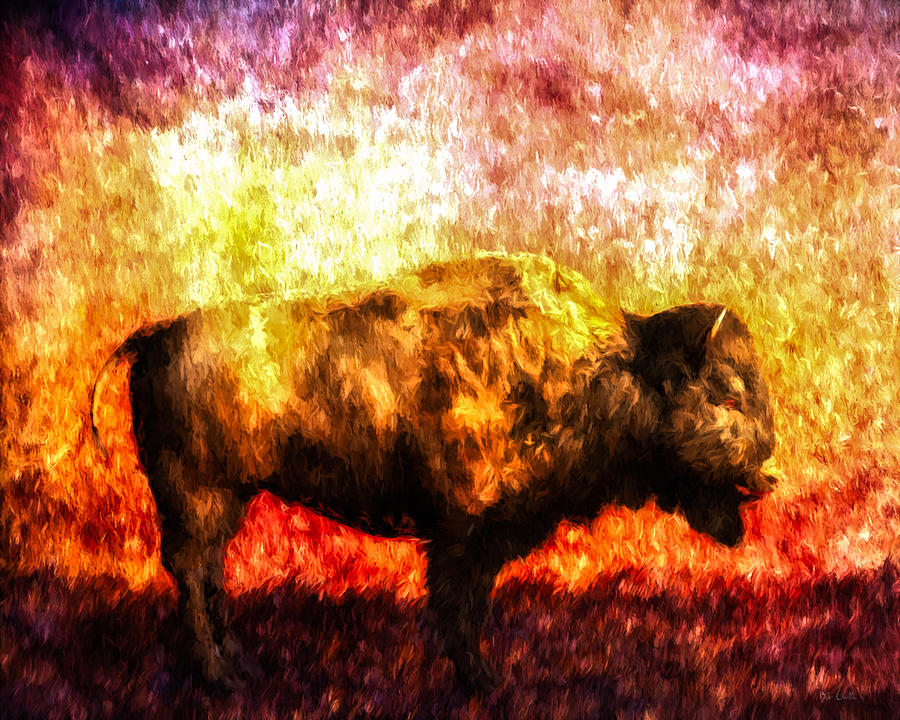 Buffalo Painting - Buffalo by Bob Orsillo