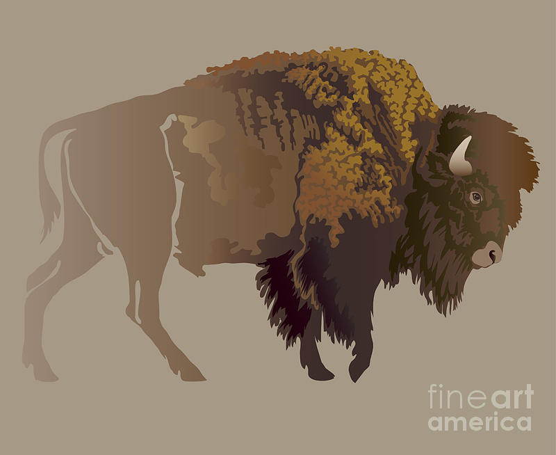Game Digital Art - Buffalo. Hand-drawn Illustration by Imagewriter