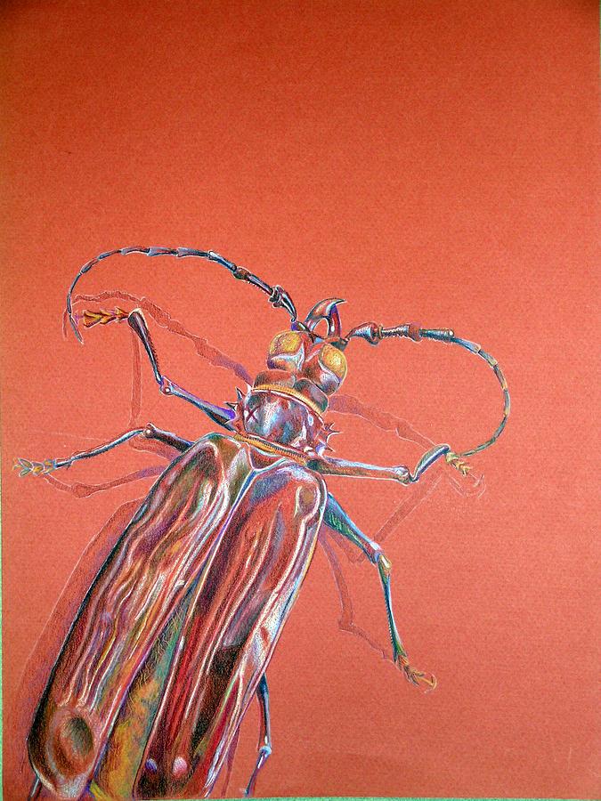 Bug by Dennis Murphy