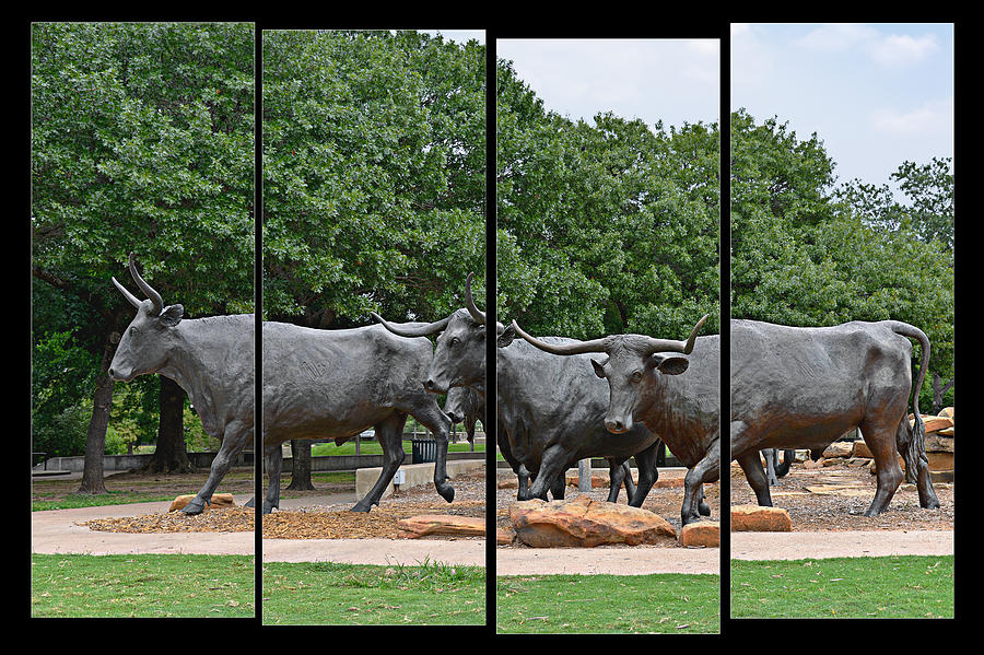 Waco Photograph - Bull Market Quadriptych by Christine Till
