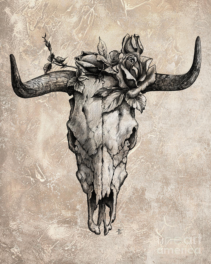 Bull Skull And Rose Drawing By Emerico Imre Toth