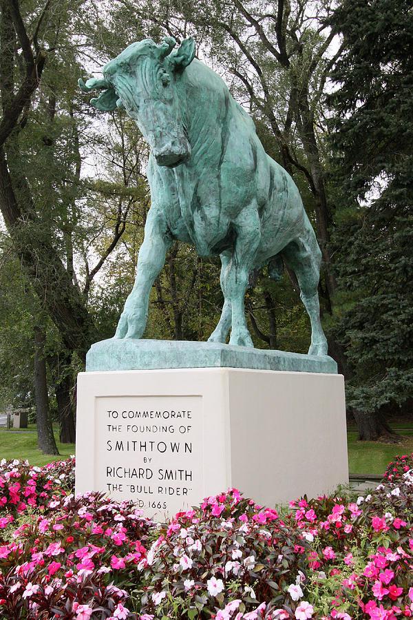 Bull Photograph - Bull Smithtown New York by Bob Savage