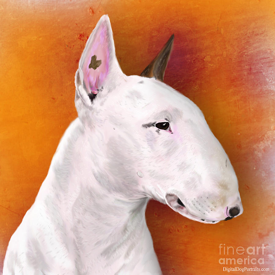 Bull Terrier Digital Art By Idan Badishi - Bull terrier art