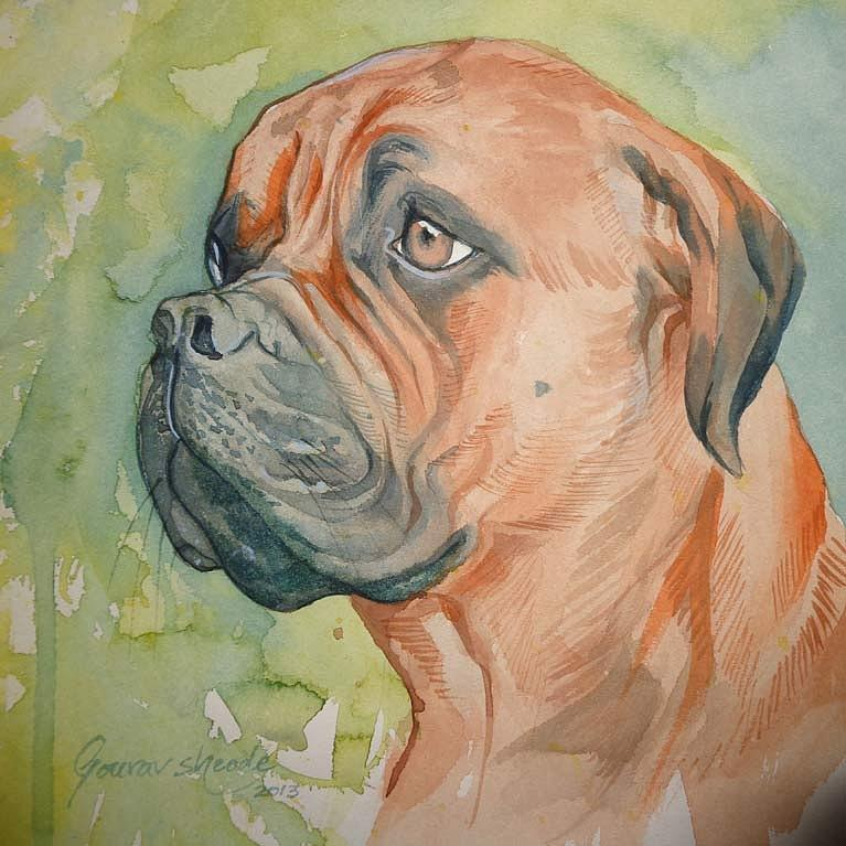 Dog Painting - Bulldog by Gourav Sheode