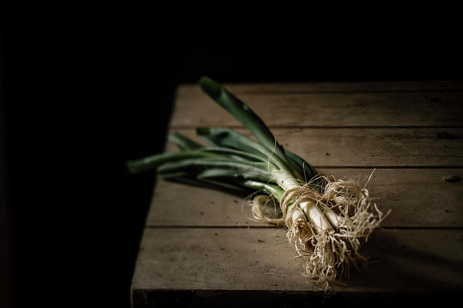 Bunch Of Spring Onions Tied With Photograph by Westend61