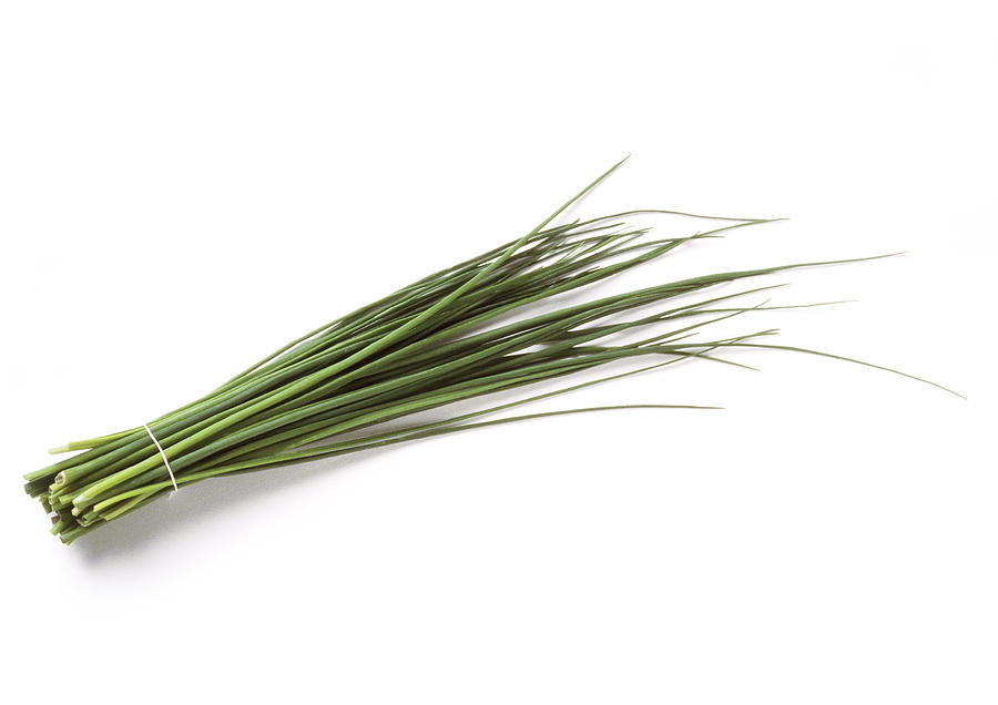 Bundle of chives, full length Photograph by Isabelle Rozenbaum