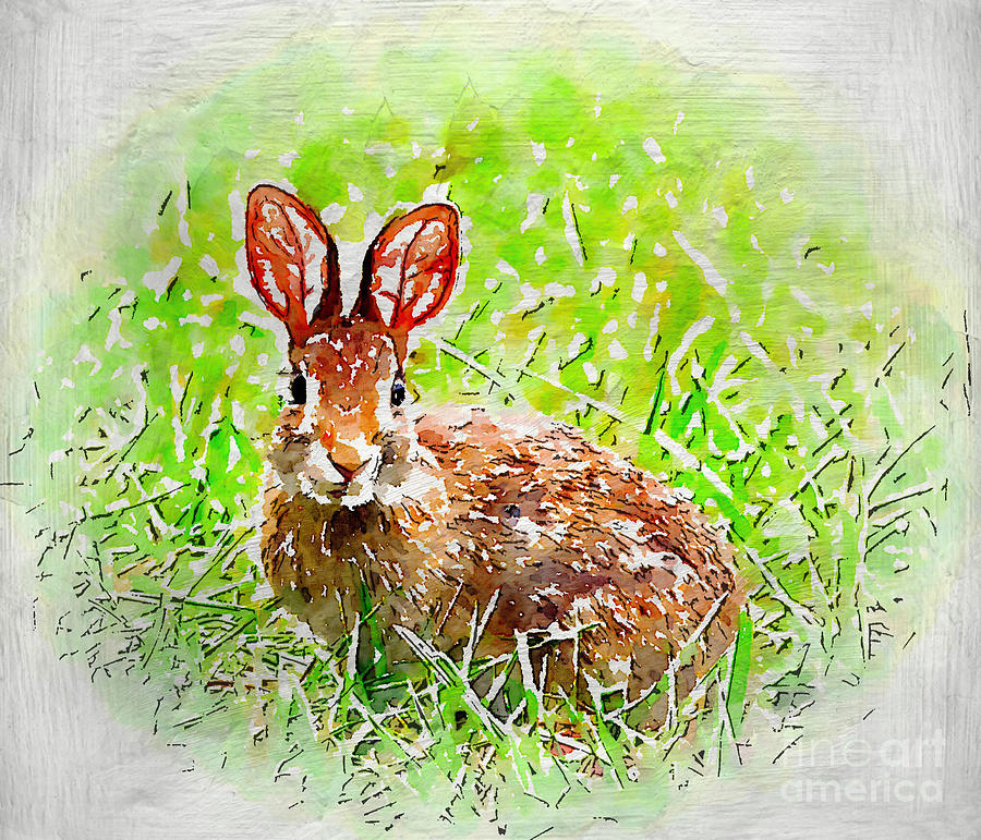Bunny Photograph - Bunny - Watercolor Art by Kerri Farley