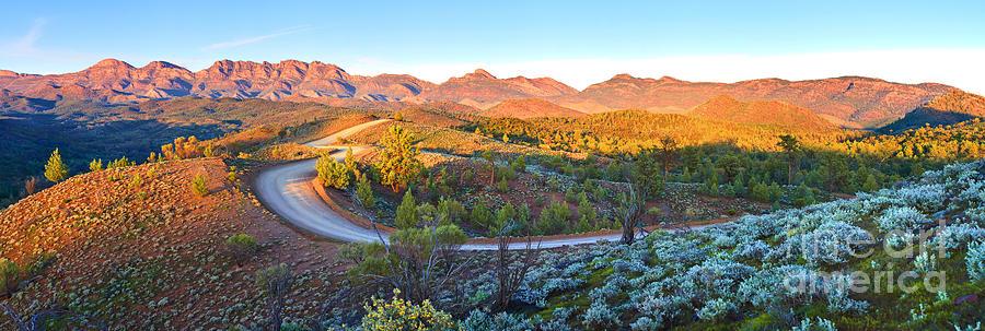 Bunyeroo Valley Photograph by Bill  Robinson